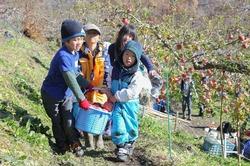 5 収穫祭.jpg