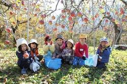 6 収穫祭.jpg