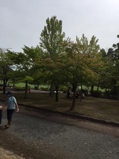 川中島.JPG